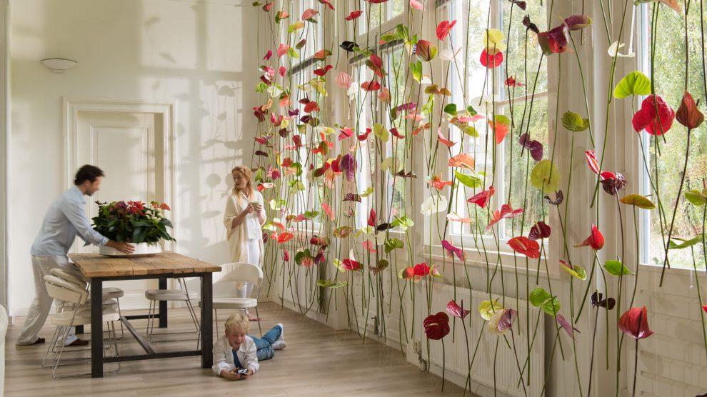 Anthurium curtain window decoration