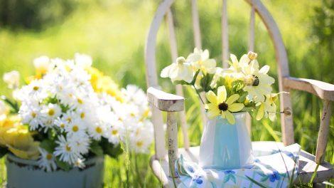 Summer garden trends