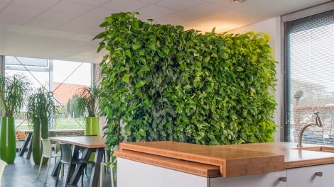 Natural room divider by Zuidkoop Natural Projects