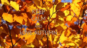 6 tips that make the transition from summer to autumn a little more easy and can help beating autumn blues.