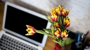 The trick to reduce work stress by bloomifique