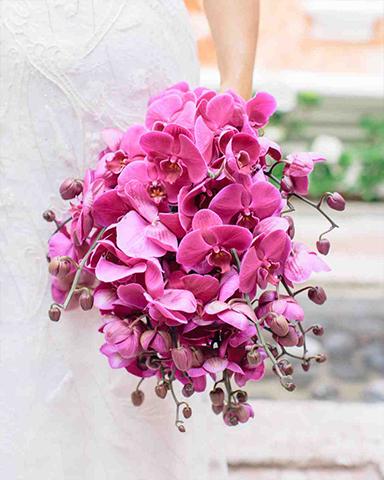 Orchid only srping wedding bouquet bouquet by Matthew Robbins. Picture: Corbin Gurkin