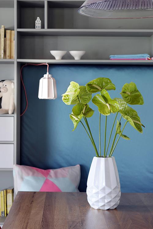 Green Anthurium for spring