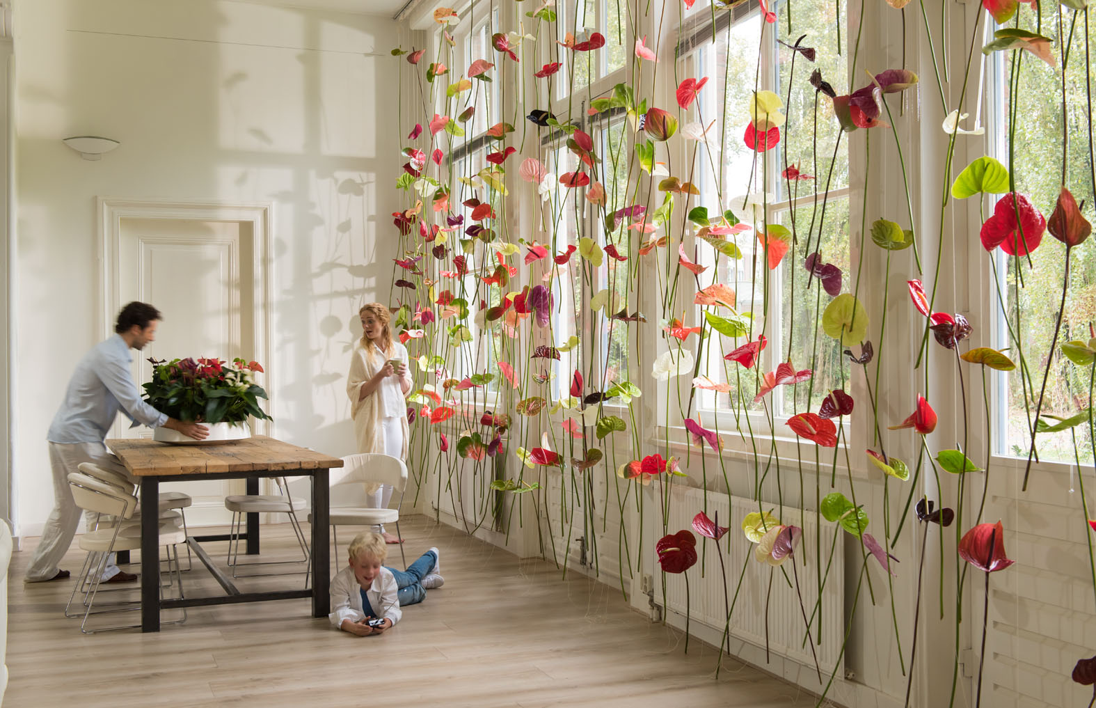 Original window decoration anthurium flower curtains for Decorate pictures