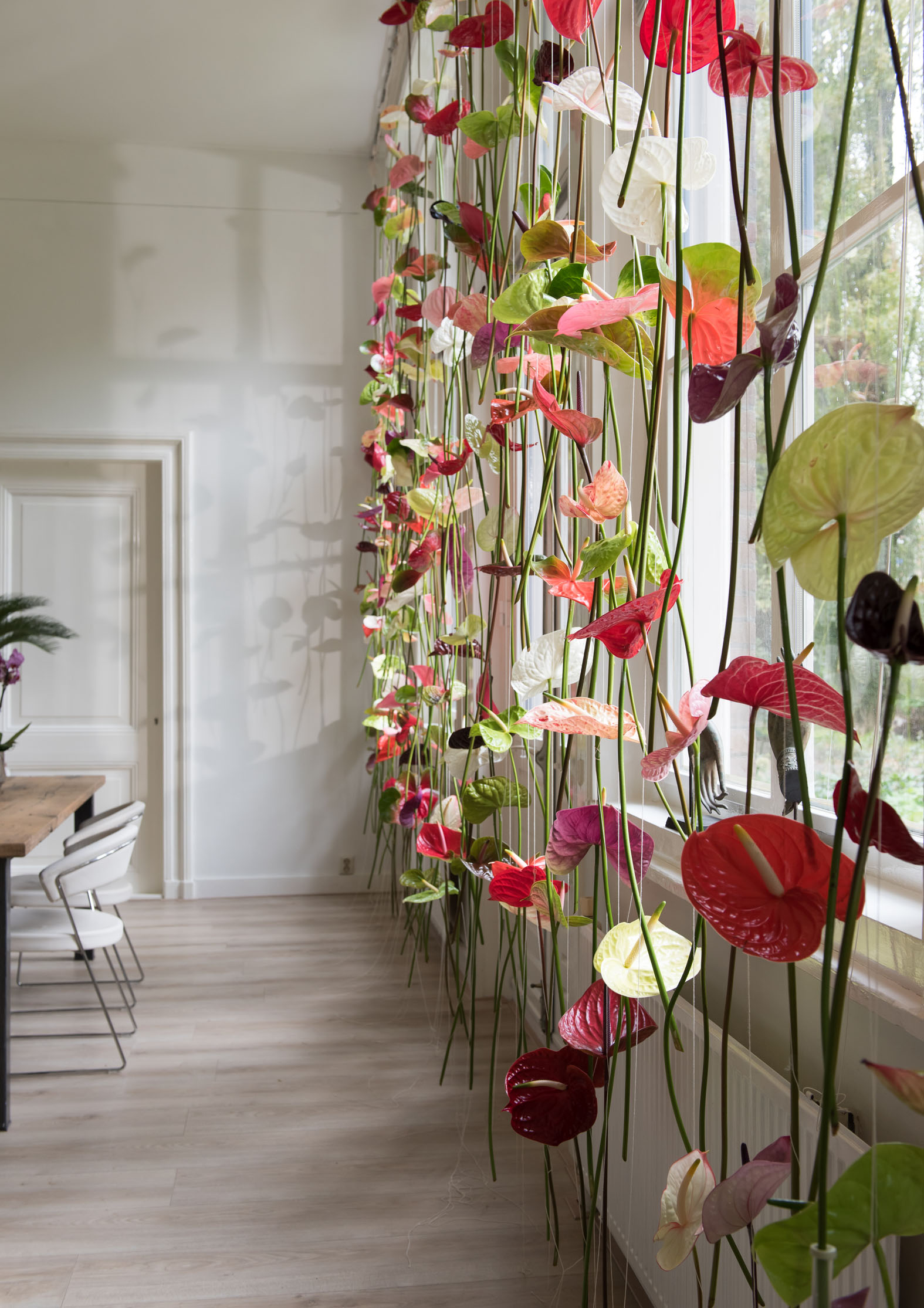 Original window decoration: Anthurium flower curtains - Bloomifique