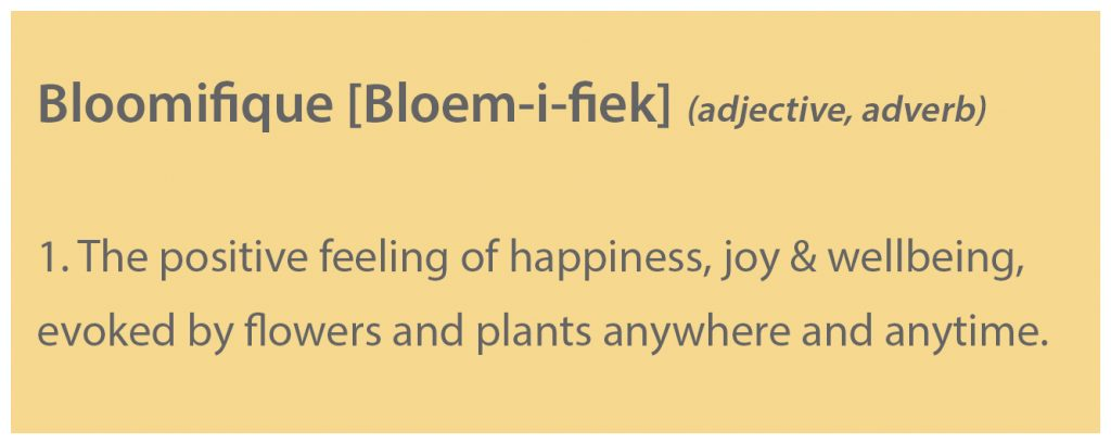 Bloomifique: 1. The positive feeling of happiness, joy & wellbeing, evoked by flowers and plants anywhere and anytime.