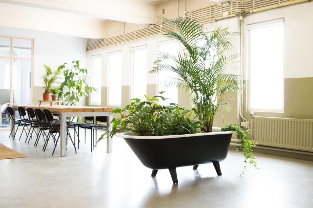 Planten Op Kantoor : Groen op kantoor zo doe je dat bloomifique
