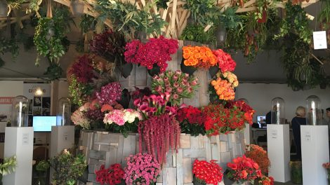 The florist of the futures by the Flower Lab