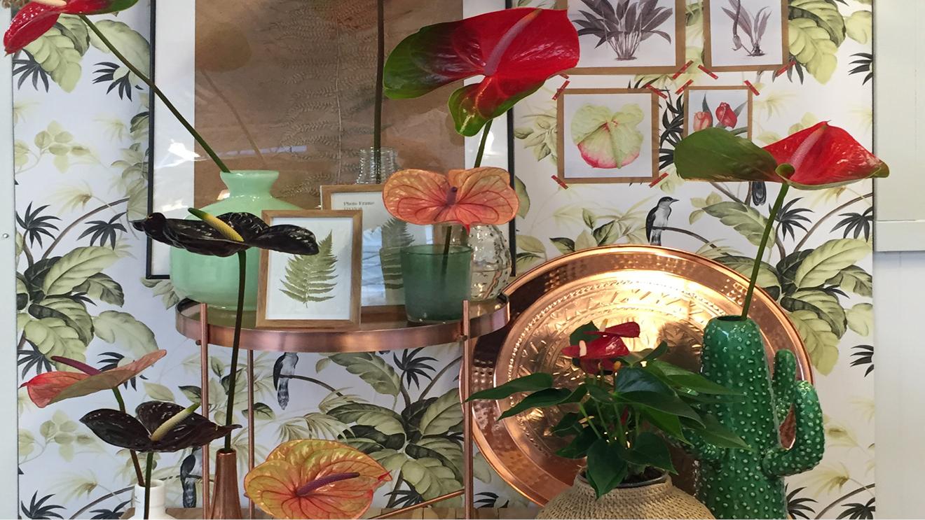 Urban Jungle Inspiratie : Urban jungle with vivid colours bloomifique