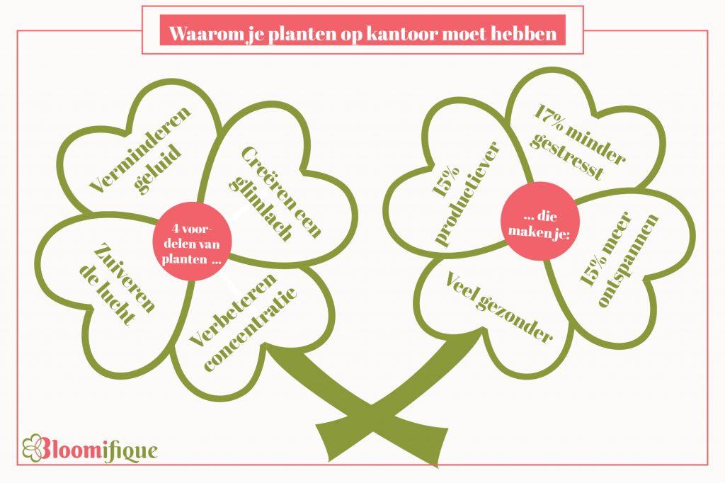 4 voordelen van planten op kantoor om gezonder en productiever te worden.