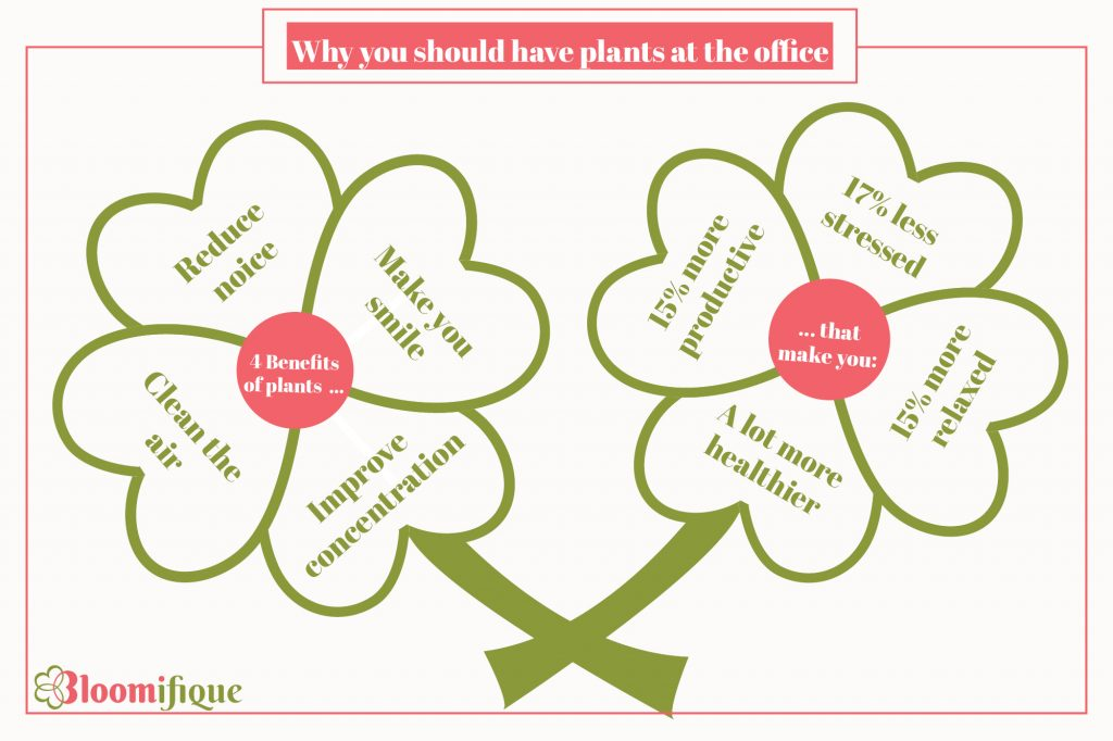 4 reasons to place plants at the office. to become healthier and more productive.