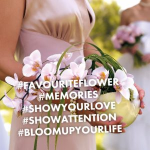 Favourite flower hashtag story
