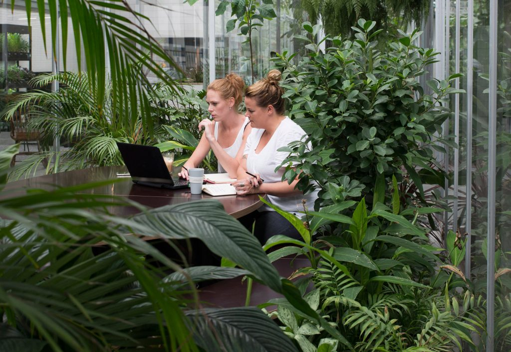 surrounded by green at joolz headquarters amsterdam. Here is why this is great!