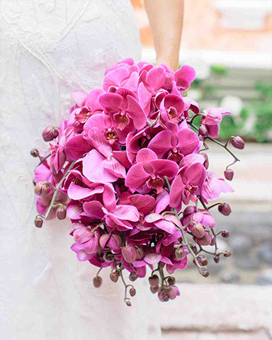 Orchid only srping wedding bouquet bouquet by Matthew Robbins. Picture: Corbin Gurkin