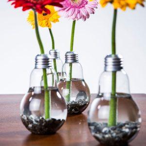cadeaus voor bloemenliefhebbers