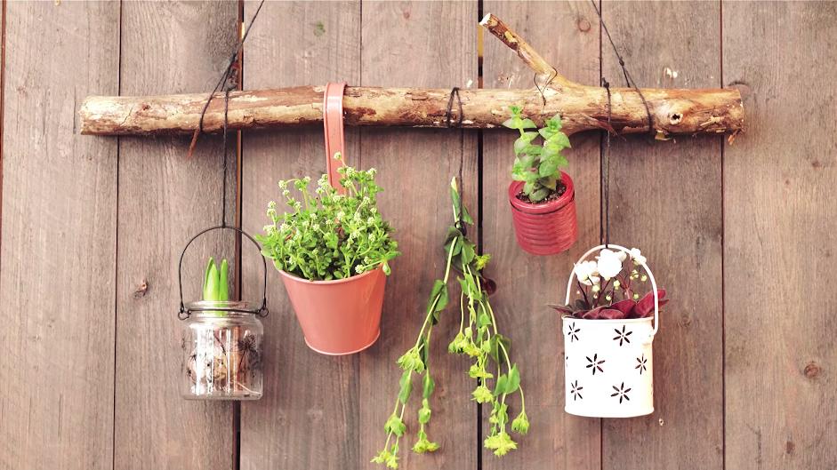 planten wanddecoratie maken