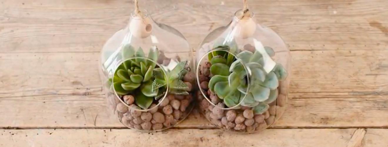 glazen ornament met plantjes maken