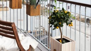 How to: tuinieren op je balkon