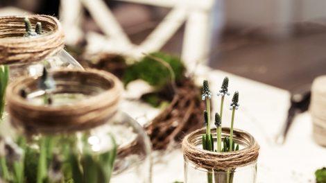 Leuke planten workshops in het voorjaar van 2019