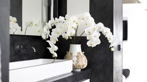 How to use an orchid as a cut flower