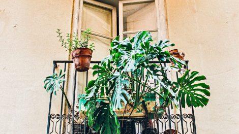 #balkongoals: de mooiste balkons van Instagram