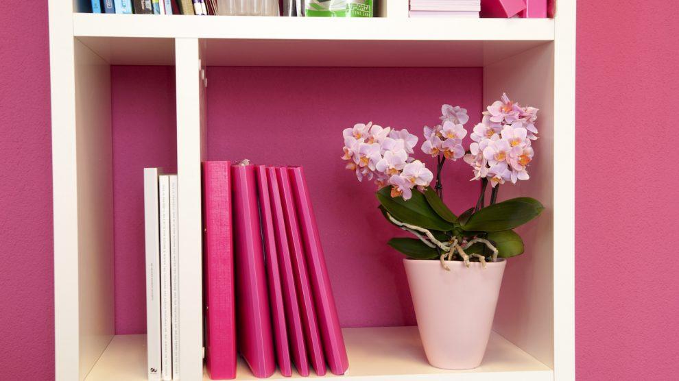 4 styling ideeën met orchideeën