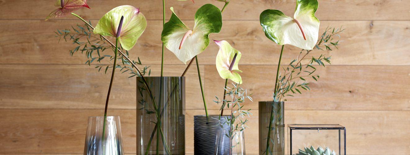 Anthurium snijbloemen verzorgen: 3 tips