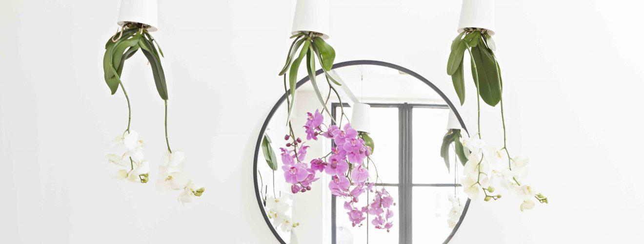 De Sky Planter: mooi, origineel én praktisch