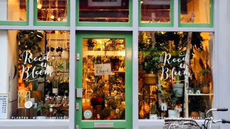 The nicest urban plant shops in Utrecht