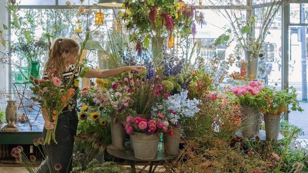 De leukste plantenwinkels in Rotterdam