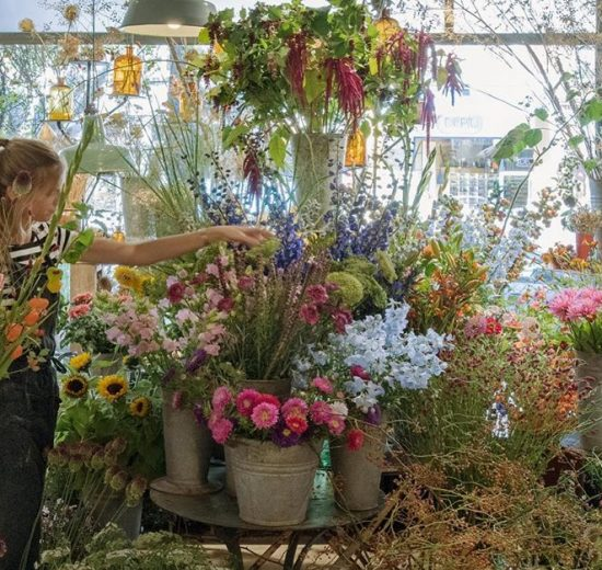 The best urban plant shops in Rotterdam