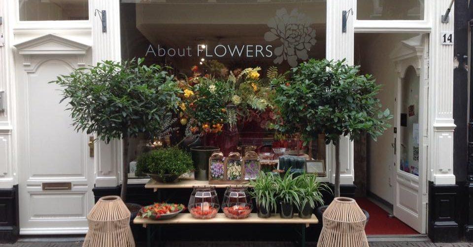 De leukste plantenwinkels in Den Haag